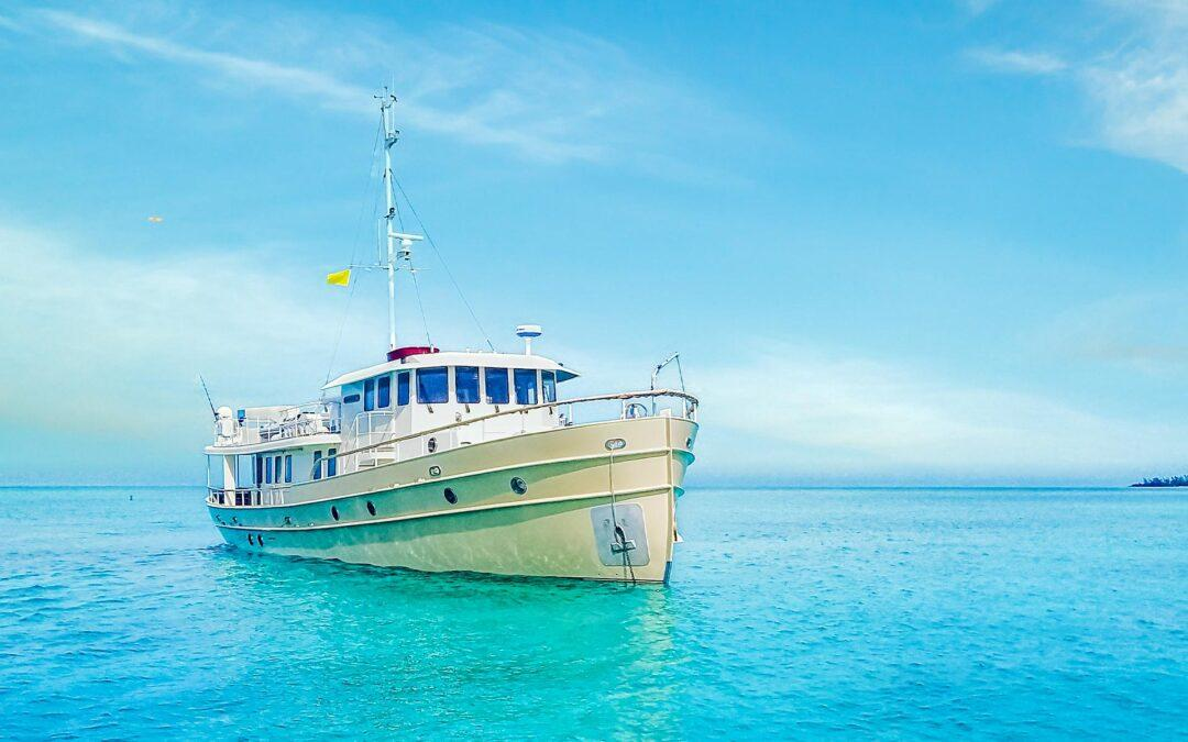 Custom Trawler WALRUS for sale