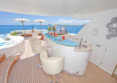 103 Johnson LORAX Luxury Yacht Charter-10